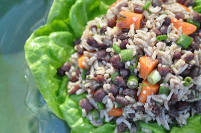 Nourishing Meals: Dilled Adzuki Bean and Rice Salad