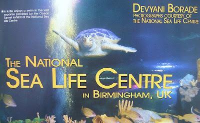 devyani borade - verbolatry - the national sea life centre in birmingham, uk - tropical fish hobbyist