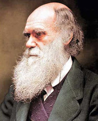 CONFESSIONS OF DARWIN'S BELOVED....