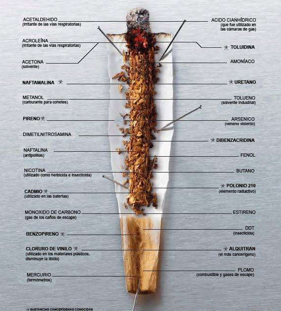 enfermedad relacionadas directamente tabaco: