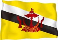 RISE MY FLAG !!