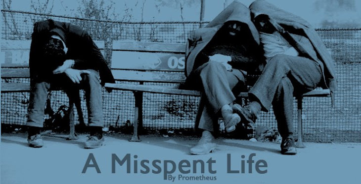 A Misspent Life