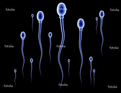 Cara Memperbanyak Sperma atau Air Mani