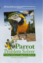 The Parrot Problem Solver