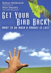 Get Your Bird Back. What to do when a Parrot is Lost