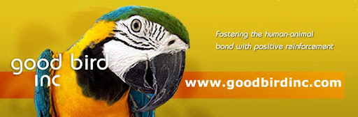 Good Bird Inc  Parrot Training Talk
