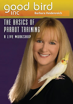 The Basics of Parrot Training: A Live Workshop