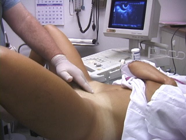 Vaginal pain and pelvic exam apologise
