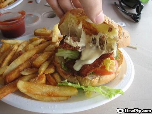 http://2.bp.blogspot.com/_ah6y-e_XTmI/TJI-JdnIoLI/AAAAAAAALjA/mWRK3wZWdq8/s1600/reptileburger007.jpg