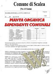 I DIPENDENTI PUBBLICI DEL 2005