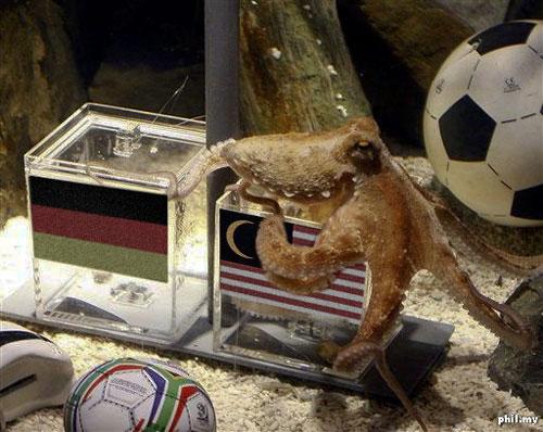 "Sotong ""Piala Dunia"" tolong ramal PRU-13..."