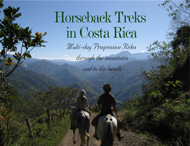 Horseback Riding Treks in Costa Rica