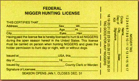 Reality 101 the gadsden minute men and the federal nigger for Fishing license tn