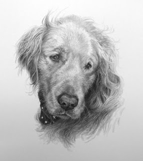 dog portrait by Lori Levin