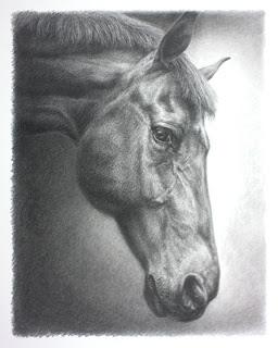 Graphite Horse Portrait by Lori Levin