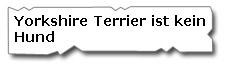 Yorkshire Terrier ist kein Hund