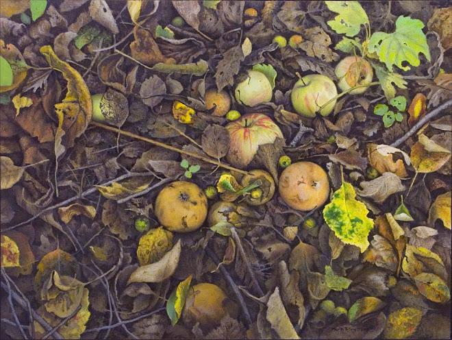 Wild Orchard , Royal Botanical Garden's, Hamilton Ontario.
