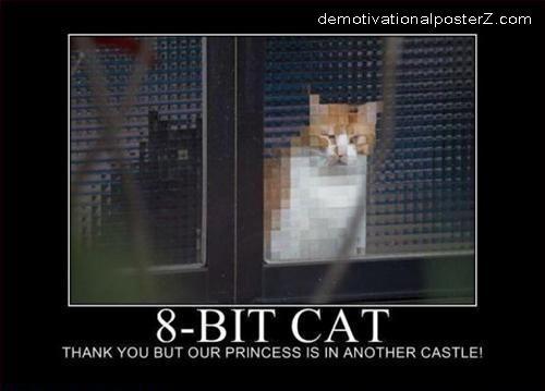 8 bit cat demotivational posters