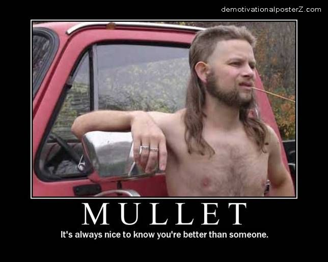 mullet motivational