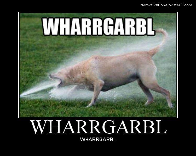 Wharrgarbl dog