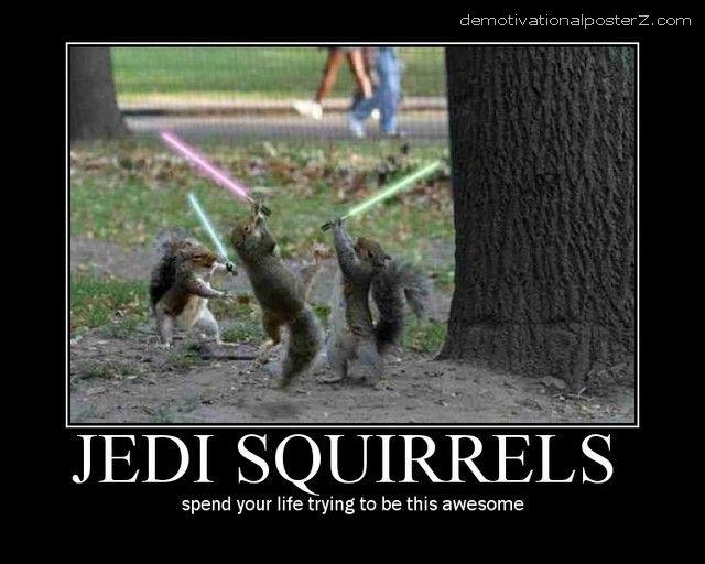 Jedi Squirels Motivational