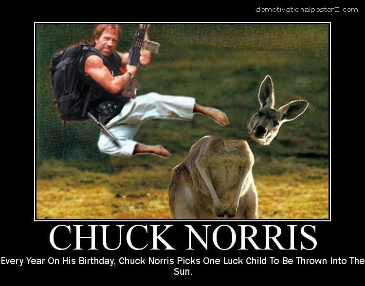 Chuck Norris Kangaroo Motivational