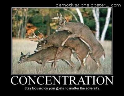 Concentration motivational poster