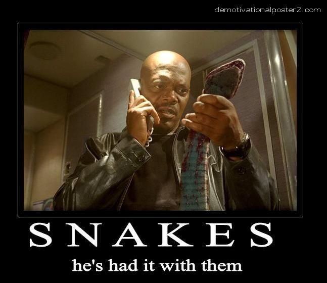Snakes - he's had it with them