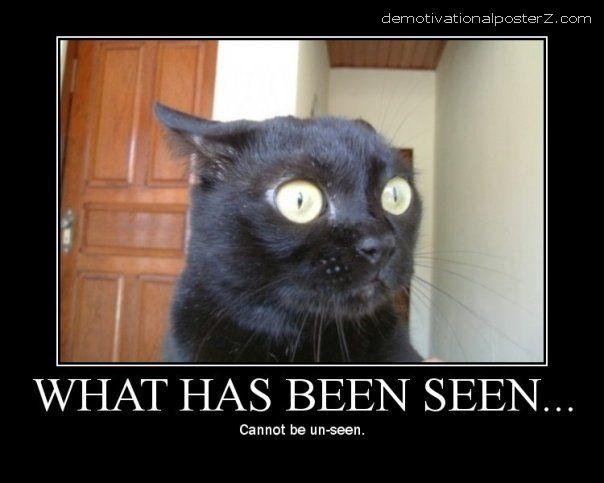 What has been seen cannot be unseen cat motivational