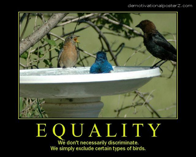 EQUALITY - we don't necessarily discriminate bird demotivational poster