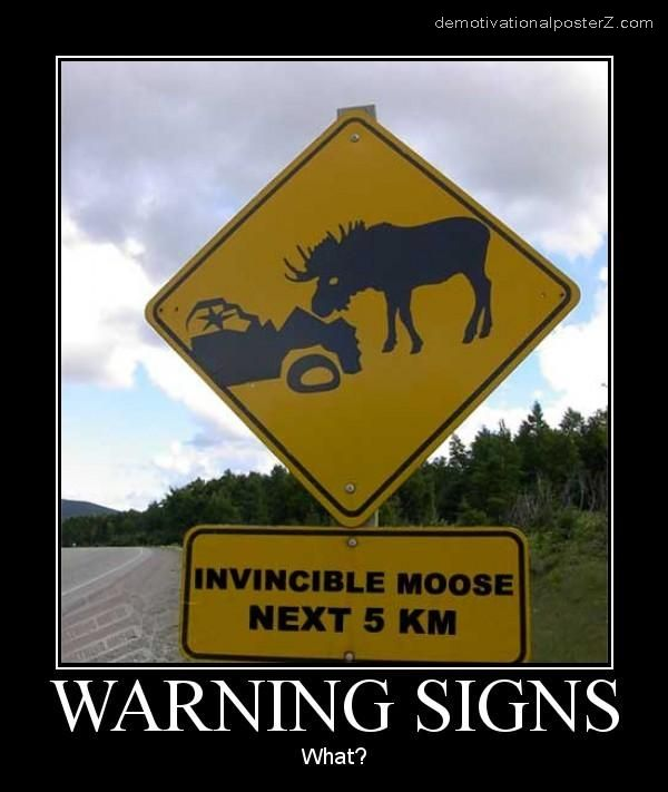 INVINCIBLE MOOSE NEXT 5 KM