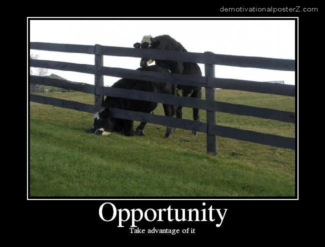 OPPORTUNITY -  take advantage of it motivational poster
