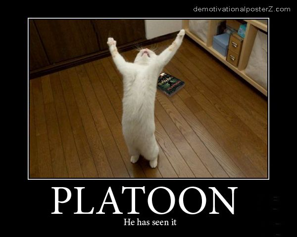 PLATOON - he has seen it motivational poster