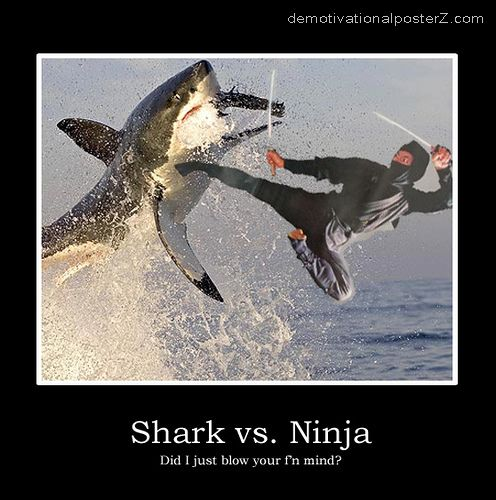 shark vs ninja motivational poster
