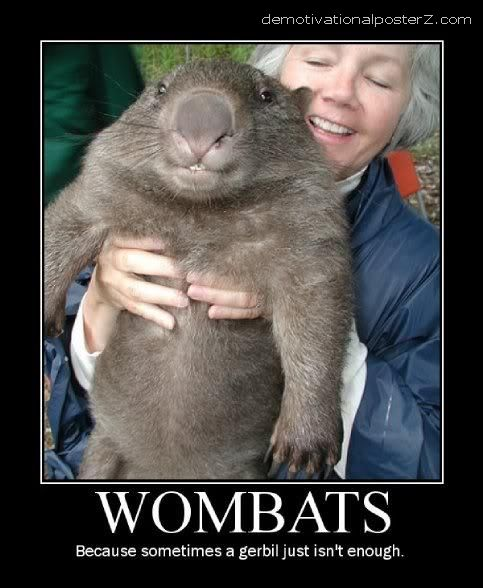 holding a wombat