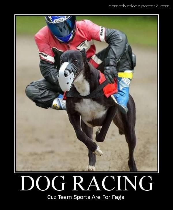dog racing motivational