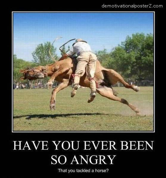 ever been so angry u tackled a horse demotivator