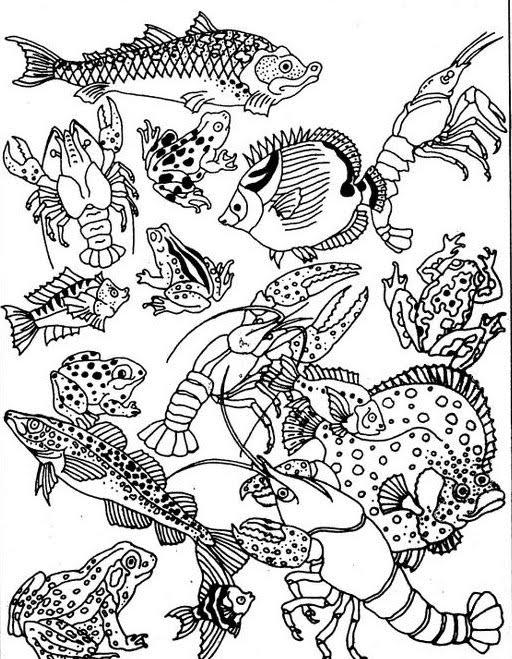 Второй рисунок - сплошная загадка. Но ...: kpanuba.blogspot.com/2010/10/blog-post_550.html