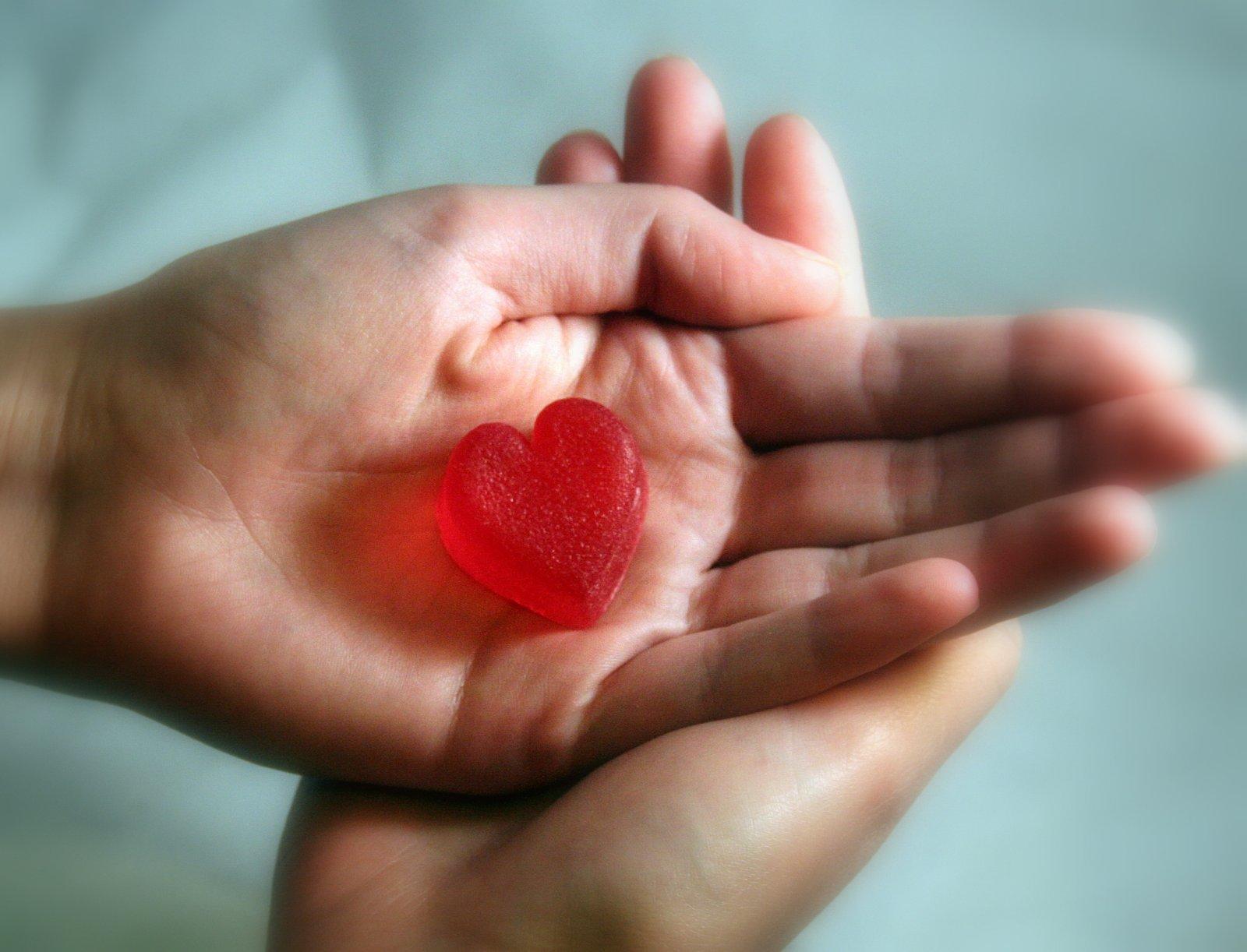 Zmysły w kuchni - przepisy kulinarne, podróże, książki: Serce na dłoni...