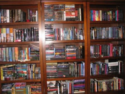 My Lovely Bookshelves
