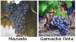 Rosado+uvas+de+Casta.bmp