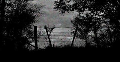 My driveway at dusk