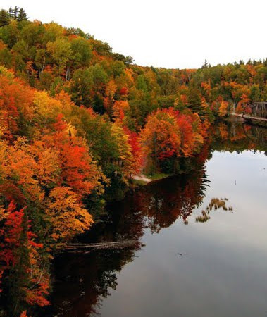 Wordless Wednesday: Michigan Autumn Daze