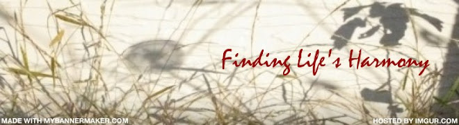 Finding Life's Harmony