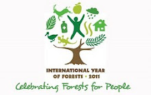 Celebrating Forests for People