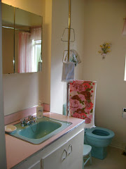 another view of the blue bathrooom
