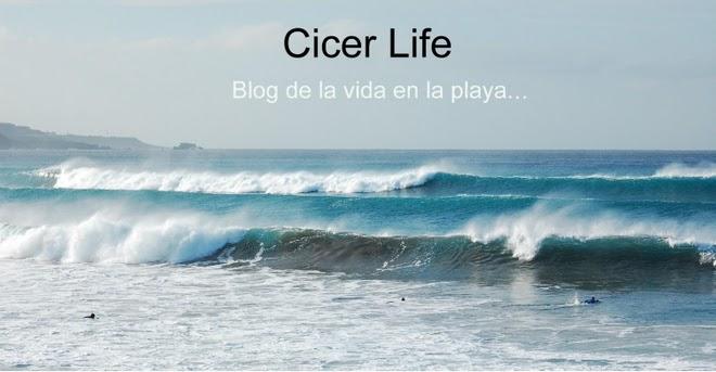 Cicer Life