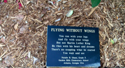 """Flying Without Wings"""