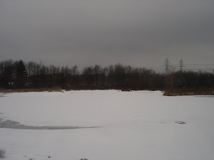Mulder Pond after first snow
