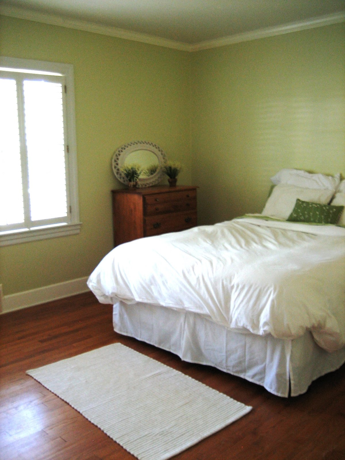 gallery for gt light green paint